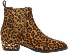 Toral 10967 leopard